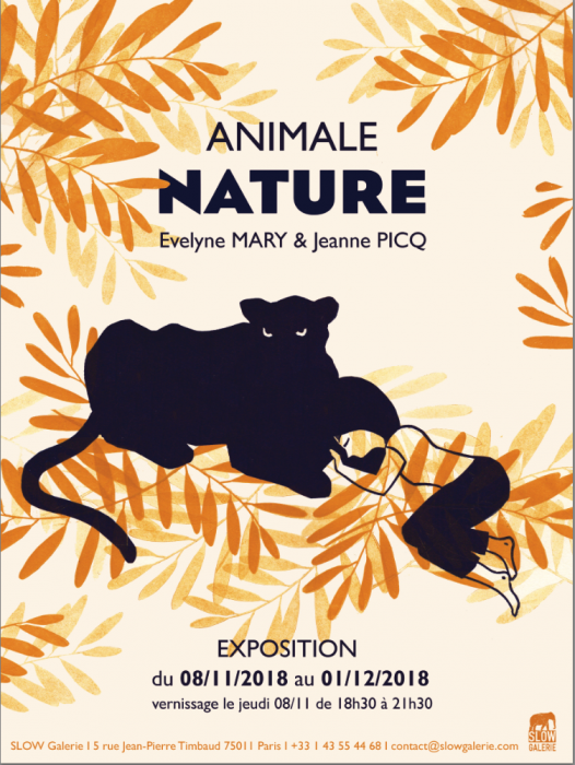 animale nature - slow galerie